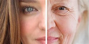 fight aging with moisturizer